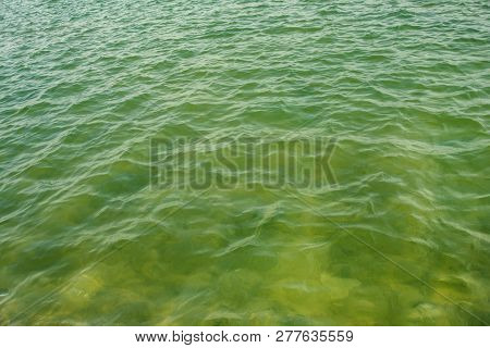 Sea Waves - Green Color Water Transperancy