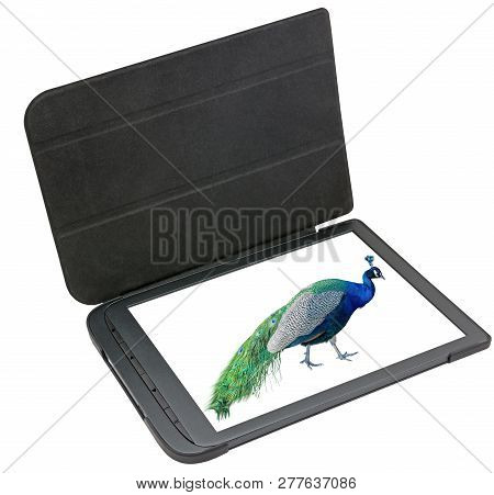 Electronic Book Reader With The Image Of Peacock On White Background