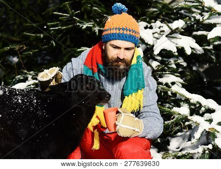 Guy With Smiling Face With Firtrees Covered With Snow.