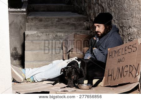 Houseless man sitting with his dog on backstreet poster