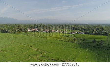 Rural Landscape In Asia Village Among Rice Fields Agricultural Land, Mountains In Countryside. Aeria