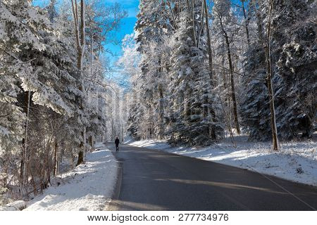 Man on the road in snowy forest