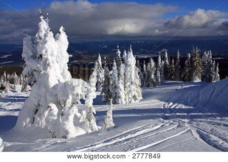 Ski Slopes Of Silver Star