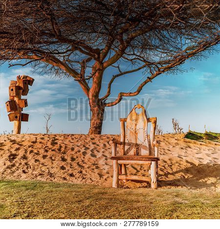 Love Chair At The Love Lakes Dubai With The Backdrop Of Love Tree. A New Tourist Destination In The