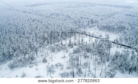 Aerial View Of A Large Area Covered With A Beautiful Winter Snow, Forest With Snow-white And Fluffy