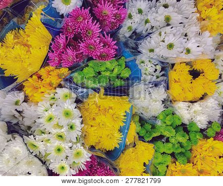 Bouquets Of A Variety Of Colorful Daisies At A Flower Market Stand