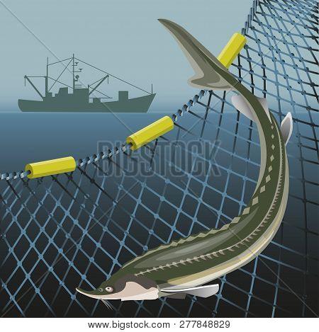Sturgeon Fish On The Background Of The Marine Nets And Fishing Ship. Sea Landscape. Vector Illustrat