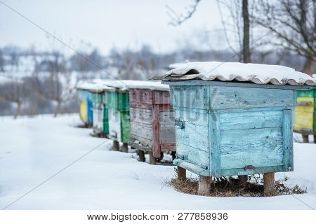 Group Beehives In The Winter Garden With Snow Covering.