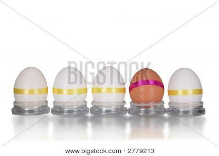 Five Chicken Eggs