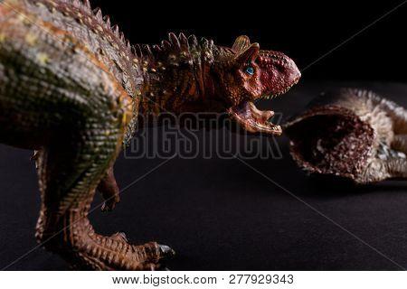 Carnotaurus In Front Of A Dinosaur Body On Dark Background