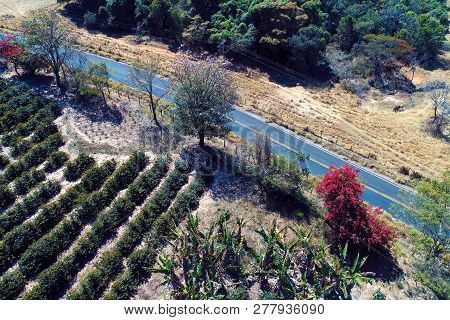 Aerial View Of Rural Road. Countryside View. Beautiful Landscape. Great Rural Scene