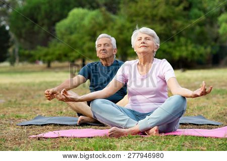 Old couple relaxing while sitting in lotus pose. Senior man and elderly woman meditating sitting in lotus position at park with closed eyes. Aged man and woman feeling relaxed sitting on yoga mat.
