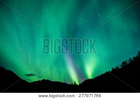 The Northern Light Above Alaska Parks Hwy