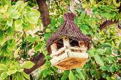 Wooden bird house hanging on the green tree. Ornithology theme. Seasonal natural scene. Retro photo filter. poster