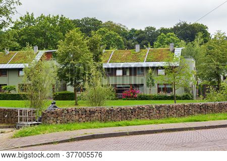 Arnhem, Netherlands - July 17, 2020: Modern Family Houses With Green Ecological Sod Roof In Suburb K