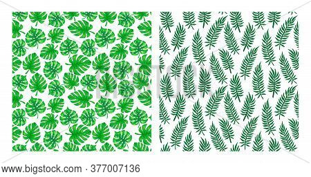 Tropical Leaf Pattern Collection. Set Of Tropic Palm Tree Leaves Seamless Patterns. Exotic Tropical