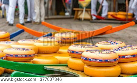 Alkmaar, North Holland / Netherlands. June 11th. 2016. Dutch Cheese At The Traditional Friday Cheese
