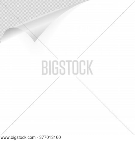 Curled Corner. Realistic Curled White Paper Corner With Shadow On Transparent Background Illustratio