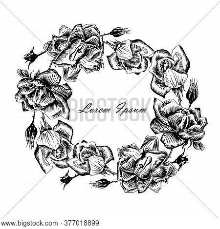 Rose Round Frame Lorem Ipsum. Original Monochrome Ink Hand Drawn Flower Art Design Element Object Is