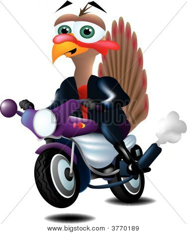 Motorcycle Riding Turkey