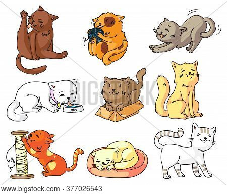 Funny Cat. Funny Cartoon Cat Character Set Isolated On White Background. Cute Sleeping, Standing, Wa