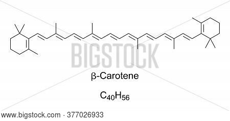 Beta-carotene, Chemical Structure. Organic, Strongly Colored Red-orange Pigment In Fungi, Plants And
