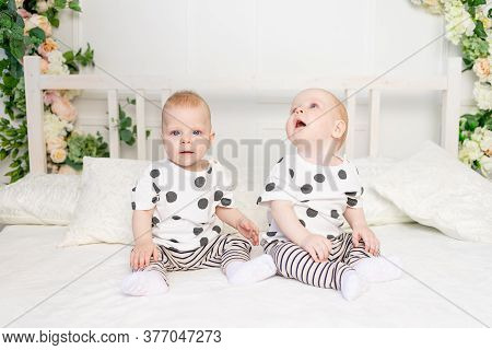 Two Baby Twins 8 Months Old Sitting On The Bed In The Same Clothes, Brother-sister Relationship, Fas