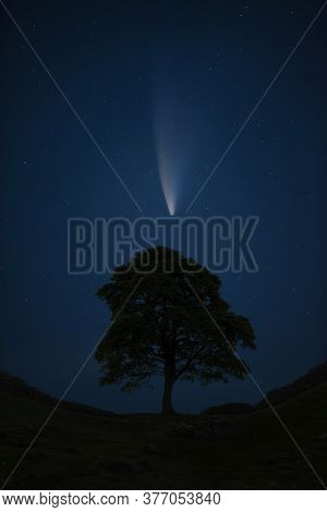 Digital Composite Image Of Neowise Comet Over Lone Tree Landscape Image