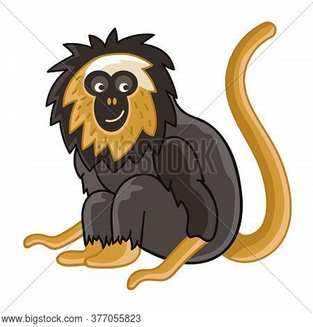 Golden-headed Lion Tamarin. Isolated Wild Ape With Tail. Cute Primate Mammal Cartoon Character Icon.