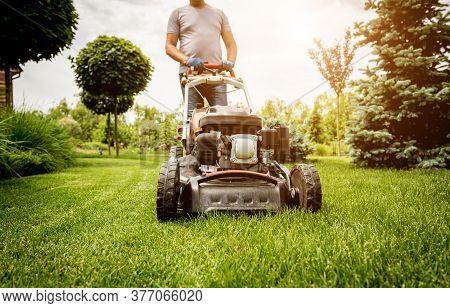 Gardener Mowing The Lawn. Landscape Design. Green Grass Background