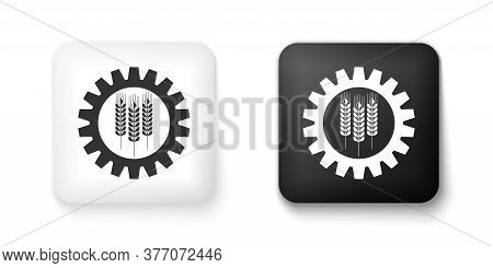 Black And White Wheat And Gear Icon Isolated On White Background. Agriculture Symbol With Cereal Gra