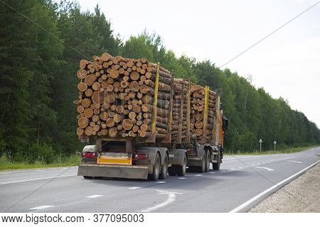 Logging Truck Carries Logs On The Road In The Summer.