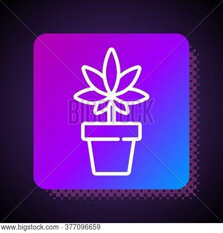 White Line Medical Marijuana Or Cannabis Plant In Pot Icon Isolated On Black Background. Marijuana G