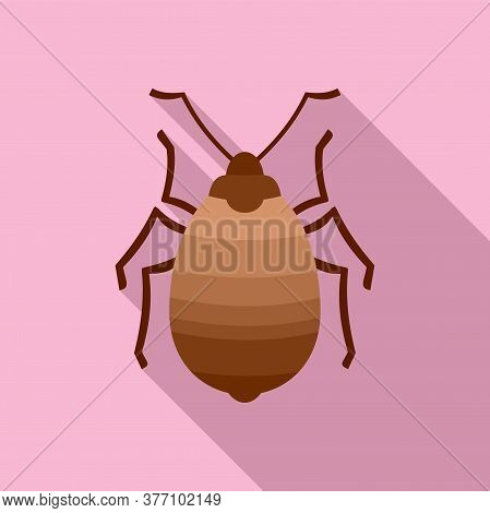 Bug Insect Icon. Flat Illustration Of Bug Insect Vector Icon For Web Design