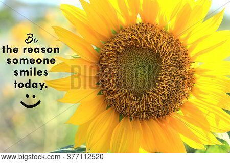 Inspirational Quote - Be The Reason Someone Smiles Today. With Closeup Of Beautiful Sunflower Blosso