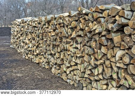 Firewood In Households
