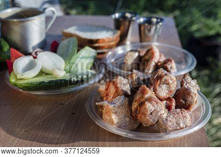 Picnic In The Fresh Air: Barbecue, Salad, Vodka Glasses. A Real Delicious Tourist Still Life