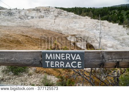 Sign For Minerva Terrace, In Mammoth Hot Springs Area Of Yellowstone National Park