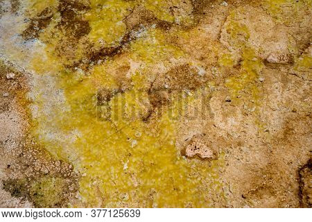 Close Up Abstract View Of A Hot Spring Waters At Biscuit Basin, A Geothermal Area Of Yellowstone Nat