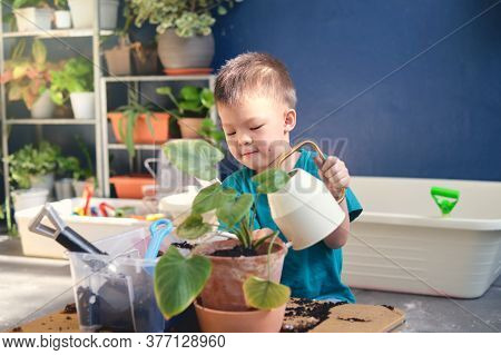 Cute Little Asian 4 Years Old Boy Kid Watering Plants With Watering Can After Planting Tree In Plant