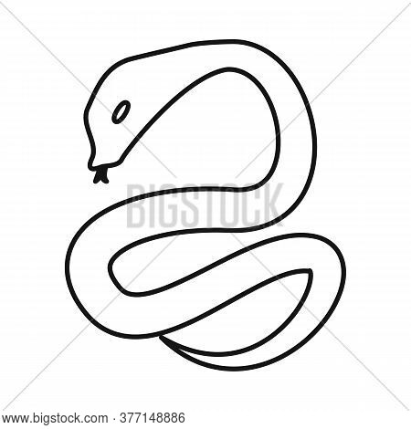 Isolated Object Of Python And Serpent Sign. Collection Of Python And Jungle Stock Symbol For Web.