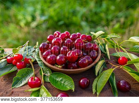 Juicy Sour Cherries With Leaf On A Outdoor Wooden Table