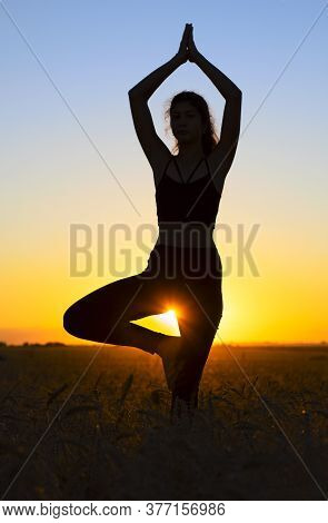 Silhouette Of A Yoga Girl Standing In A Tree Pose Vrikshasana At Sunset