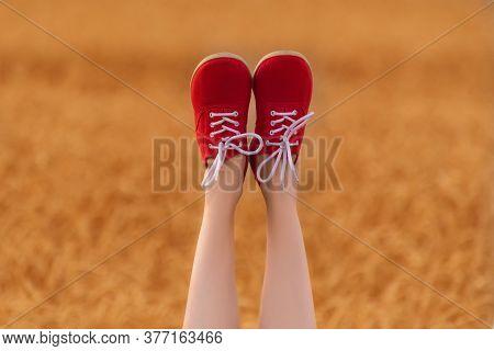 Feet In Red Shoes Upwards. Slender Female Legs On Wheat Field Background