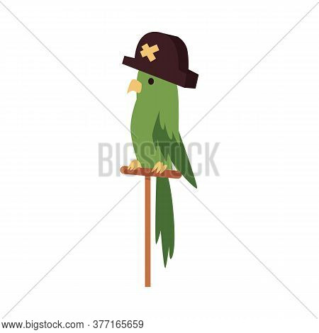 Green Cartoon Parrot Bird With Pirate Hat Sitting On Wooden Perch