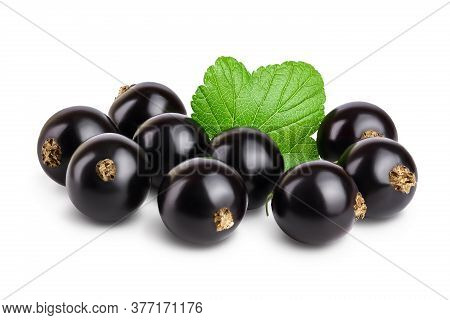 Black Currant With Leaves Isolated On White Background With Clipping Path And Full Depth Of Field