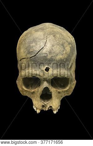 The Human Skull Isolated On Black Background