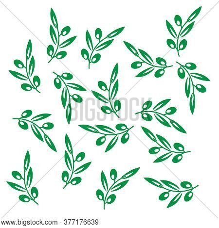 Olive Tree Pattern. Vector Olives Background. Olive Texture