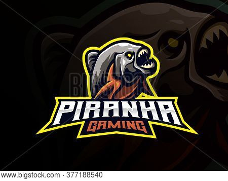 Piranha Mascot Sport Logo Design. Predator Animal Mascot Vector Illustration Logo. Wild Piranha Amaz