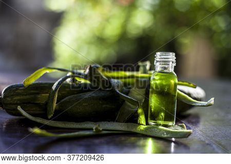 Close Up Shot Of Fresh Essential Oil Or Sponge Gourd Or Luffa In A Glass Bottle Along With Some Fres